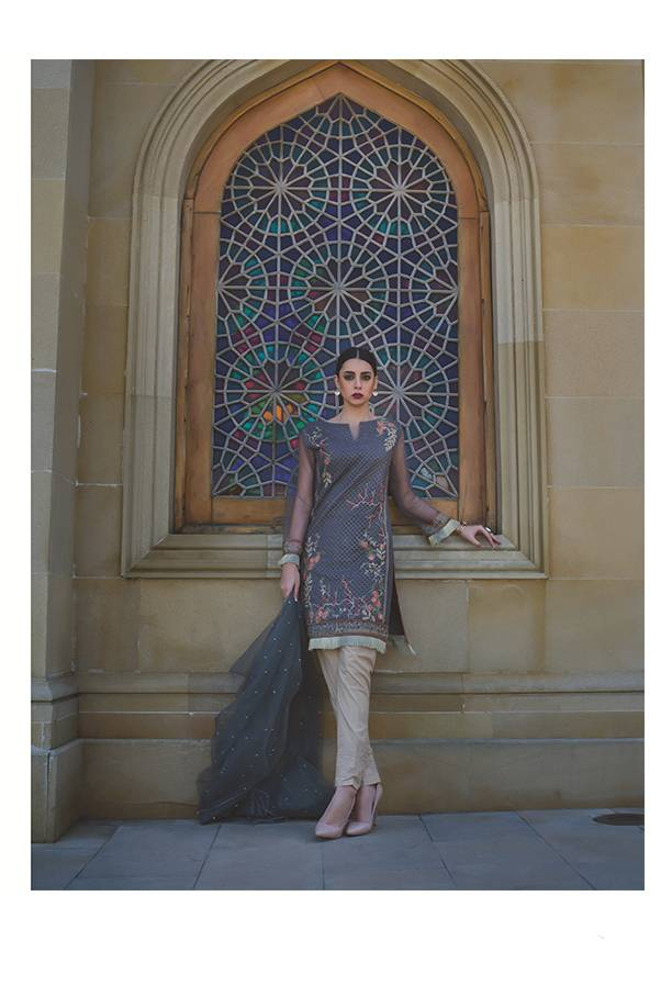 Areeba Saleem Embroidered Organza Unstitched 2 Piece Suit AS17C 09