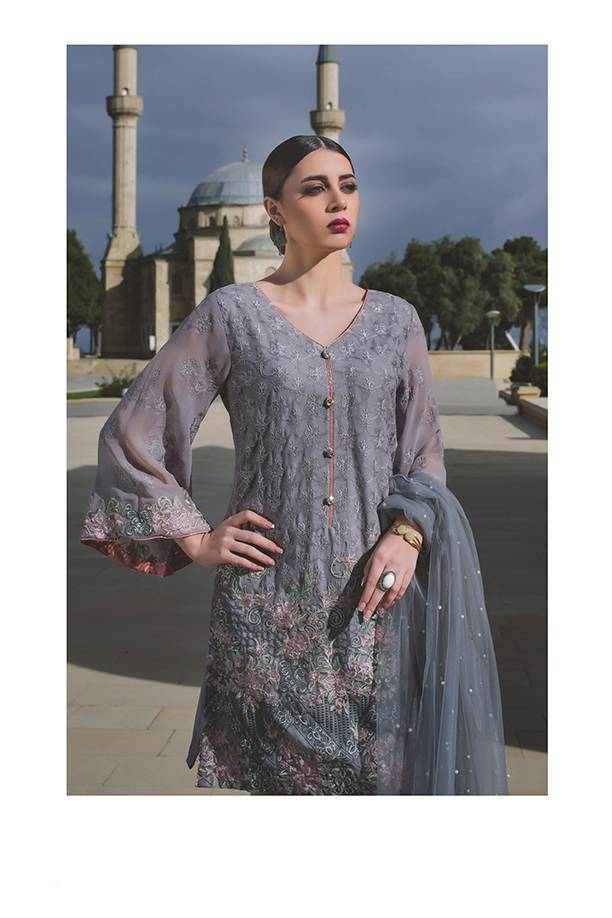 Areeba Saleem Embroidered Chiffon Unstitched 2 Piece Suit AS17C 11
