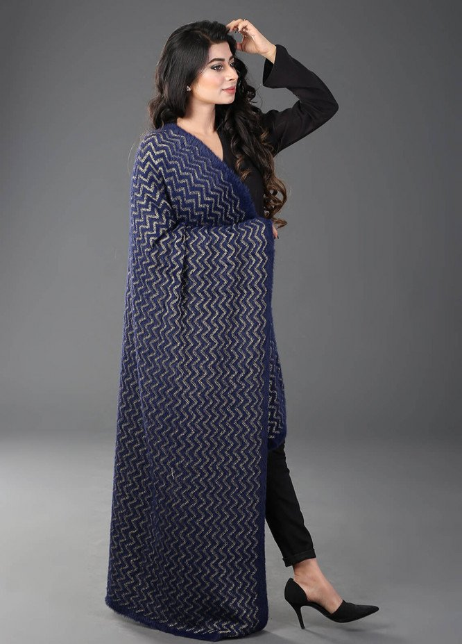 Change  Acrylic Embroidered Shawl ZP015-Navy - Winter Collection