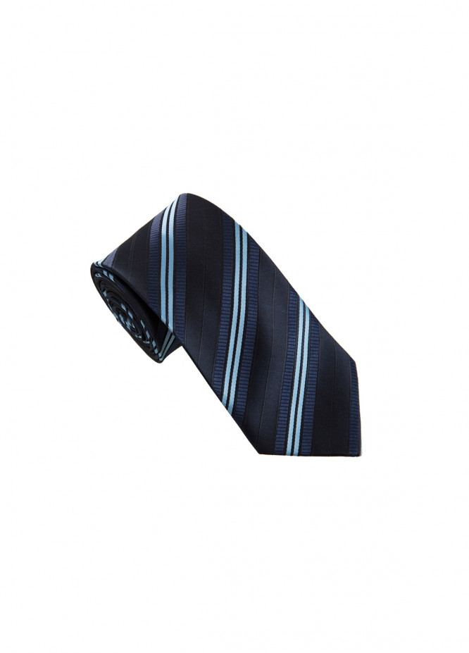 The Gentlemen's Club Blue Striped Silk Men's Ties